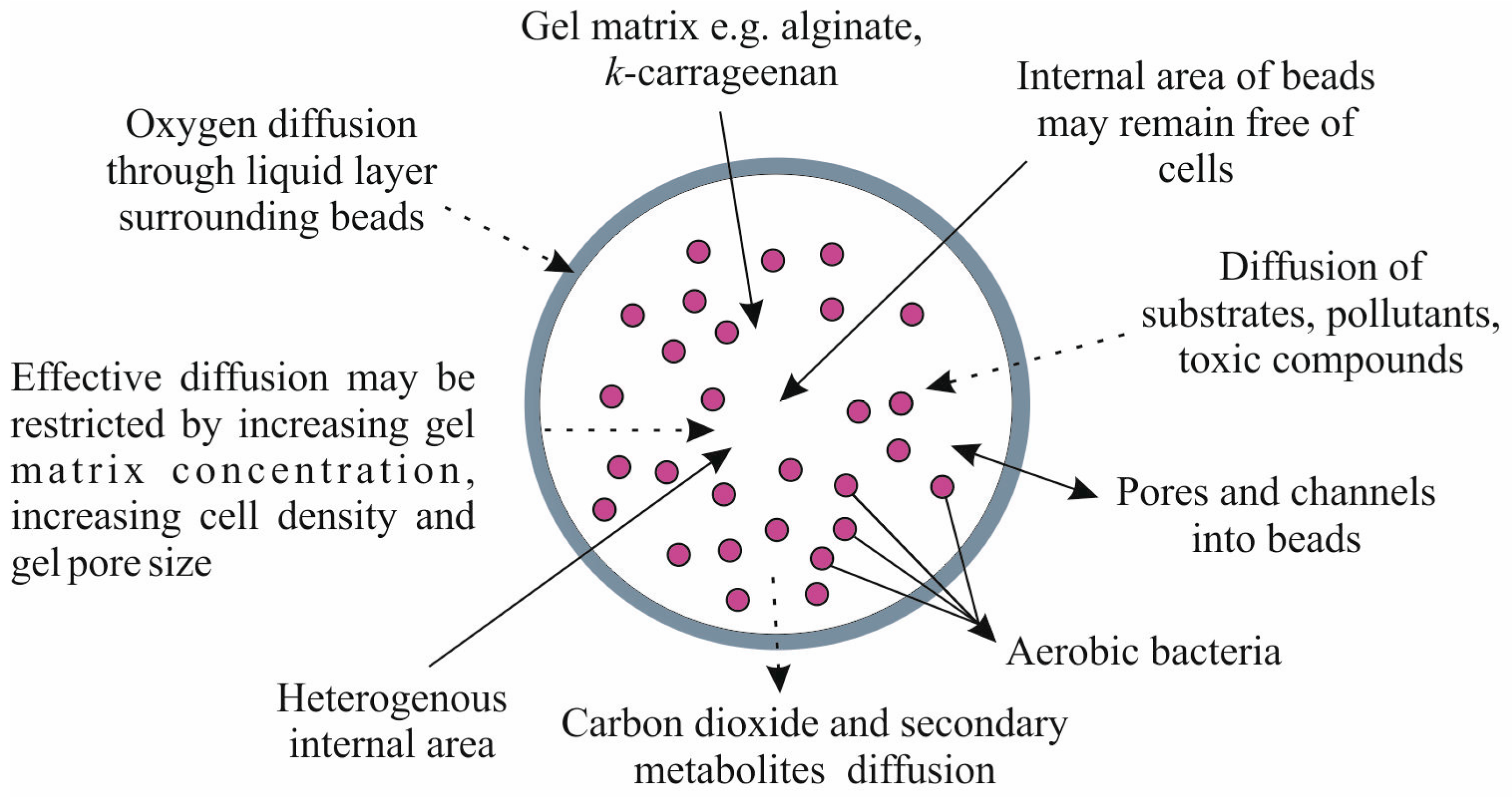 microbial biofilms for various biotechnological applications Ecological roles and biotechnological applications of marine and intertidal  microbial biofilms mitra s(1), sana b, mukherjee j author information: (1)school  of.