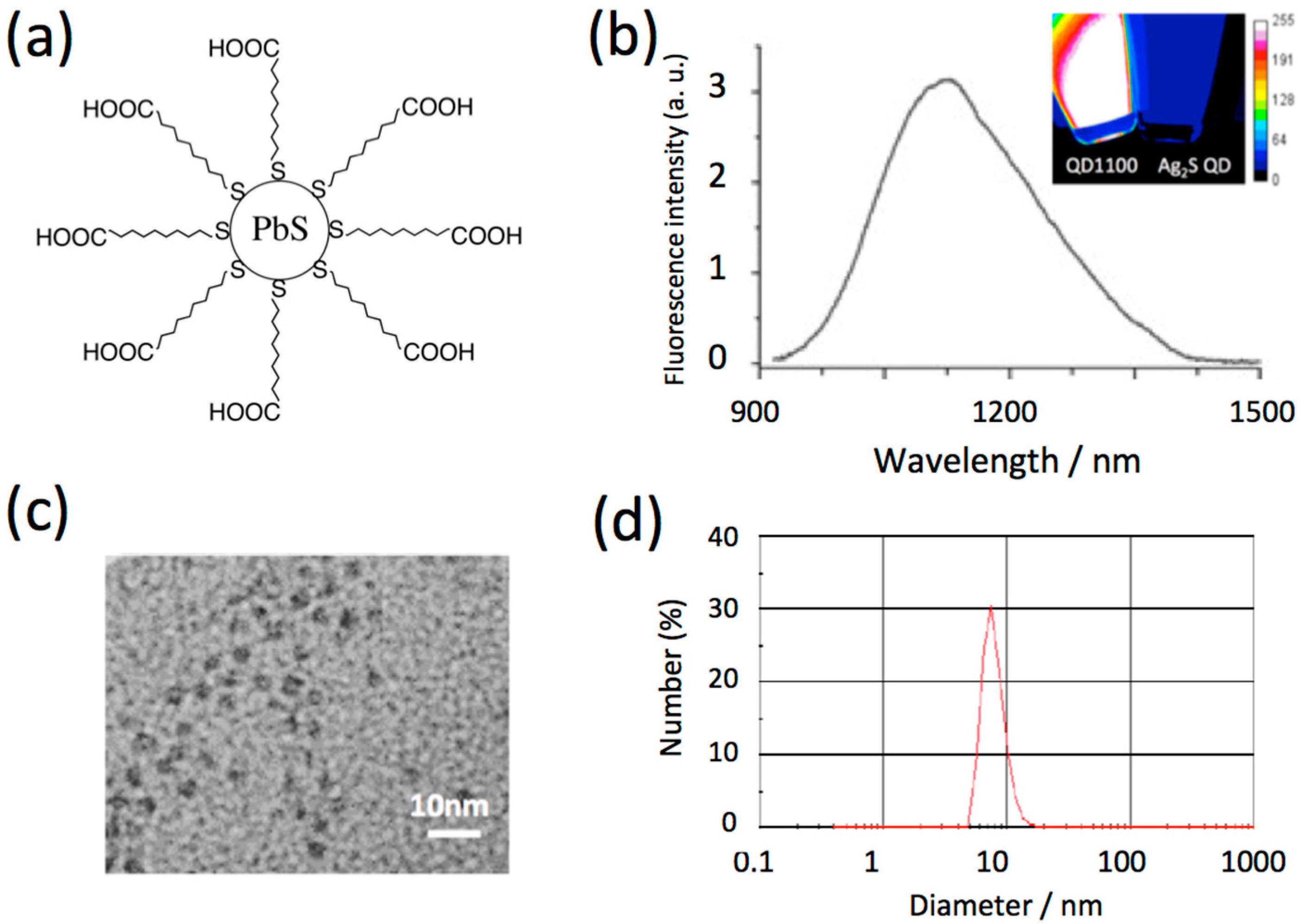 Molecules | Free Full-Text | Near-Infrared Emitting PbS Quantum Dots