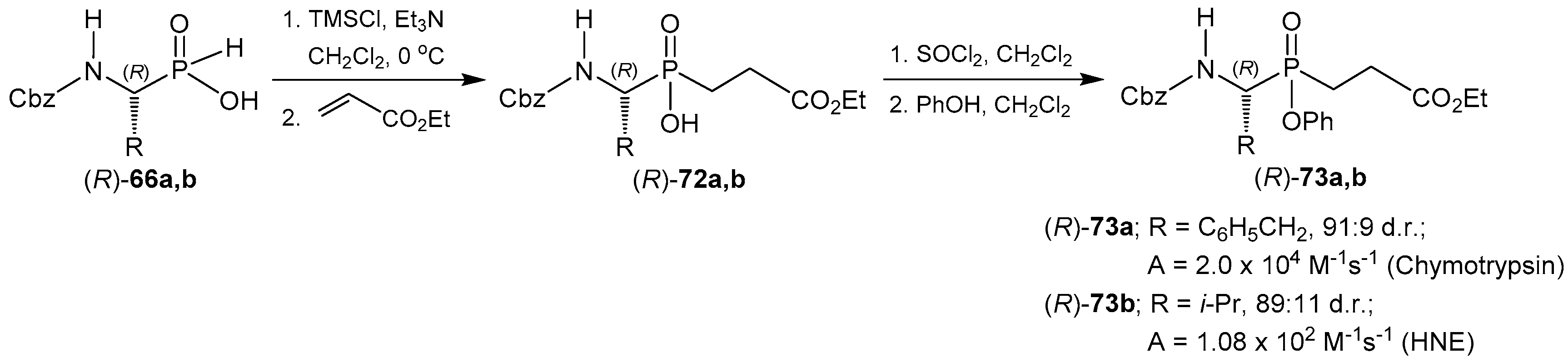 Molecules Free Full Text Stereoselective Synthesis Of α Amino C Phosphinic Acids And Derivatives Html