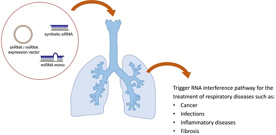 short interfering rna essay The discovery of an evolutionarily conserved mechanism of rna-interference (rnai) accentuates this objective  short interfering rnas (sirnas) formed are made up.