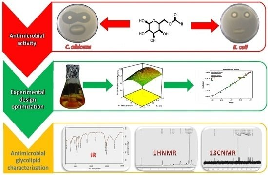 Bioactivity of a Novel Glycolipid Produced by a Halophilic Buttiauxella sp. and Improving Submerged Fermentation Using a Response Surface Method