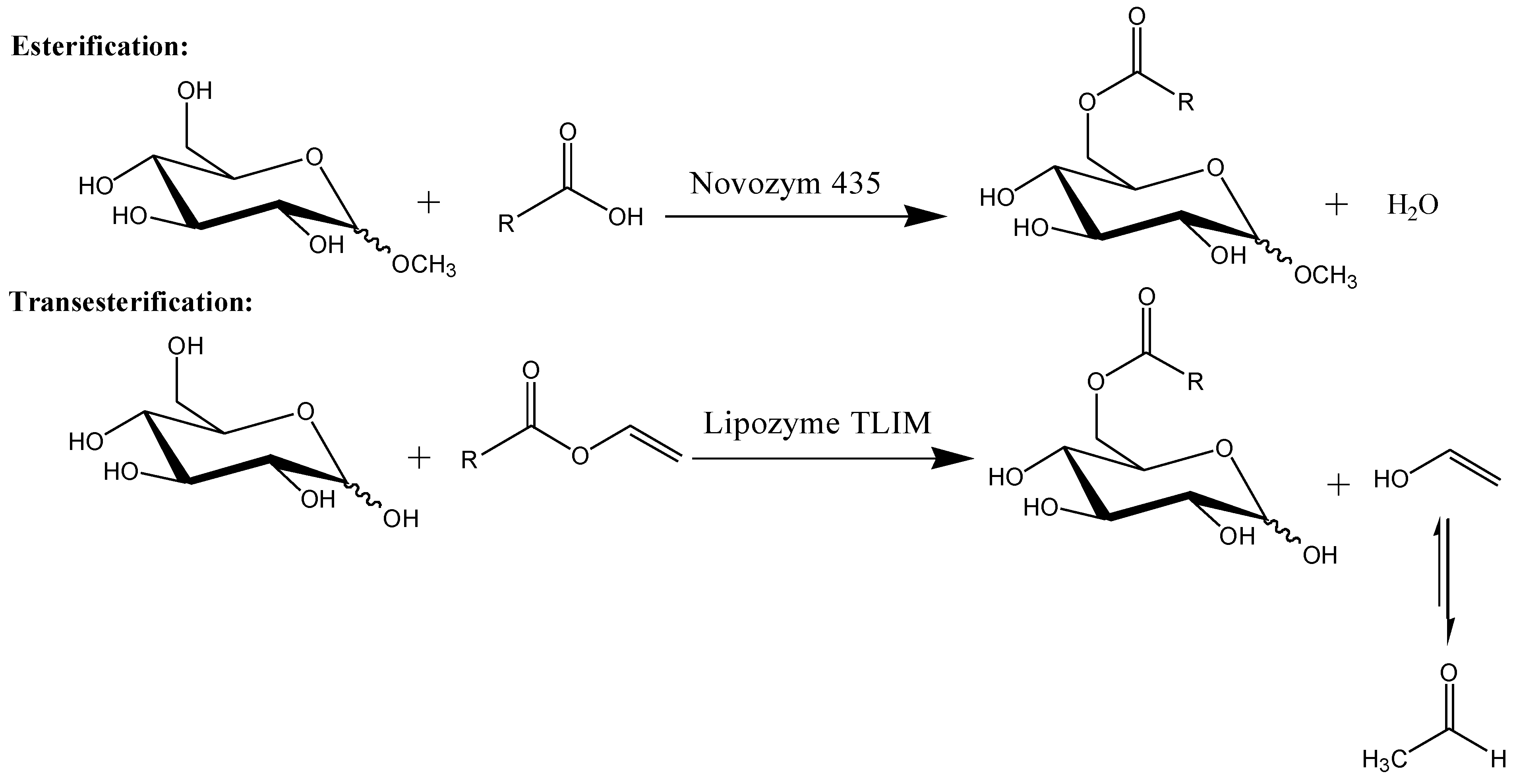 Molecules Free Full Text Enzymatic Synthesis Of