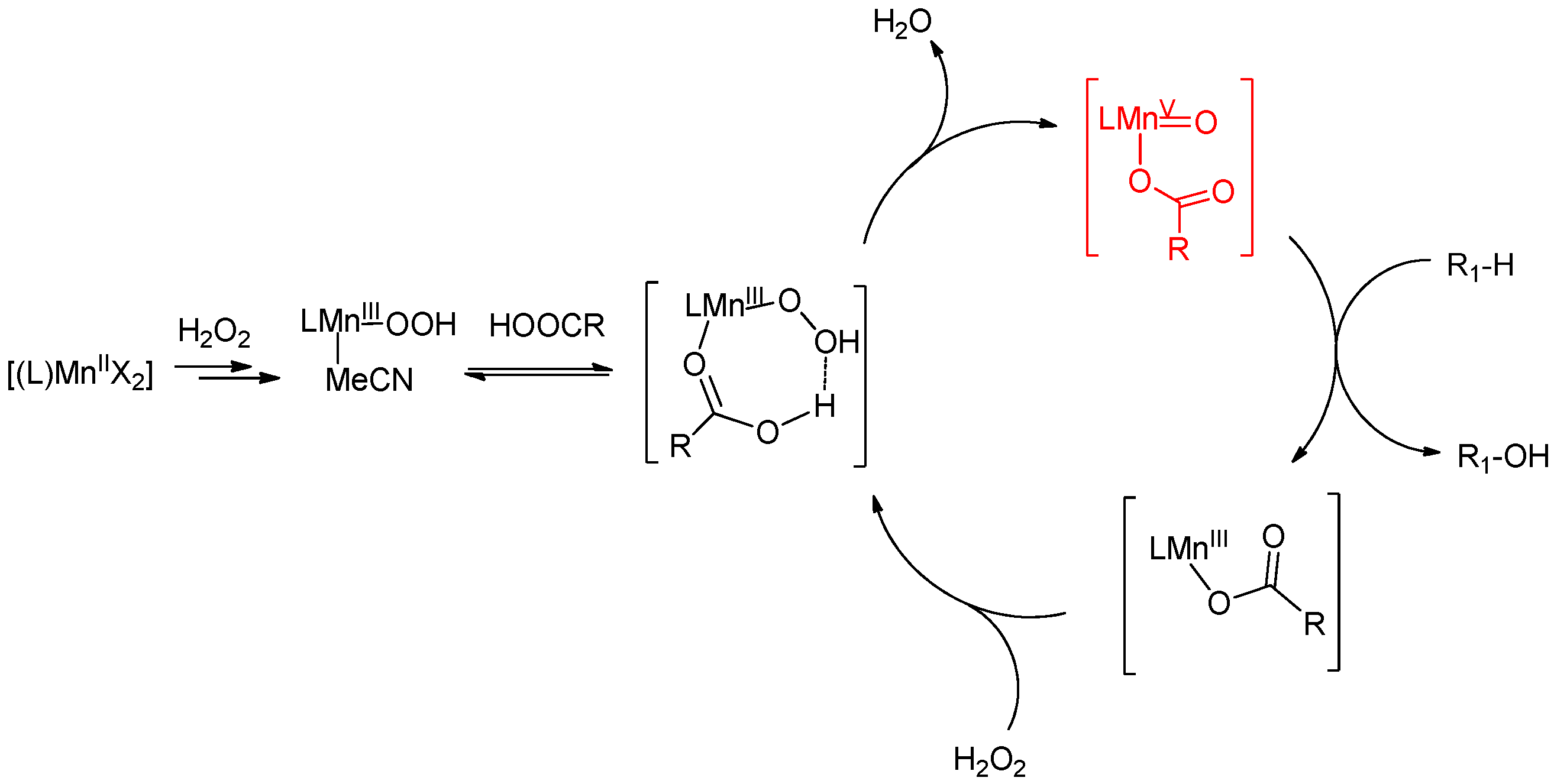 Molecules Free Full Text Direct Selective Oxidative