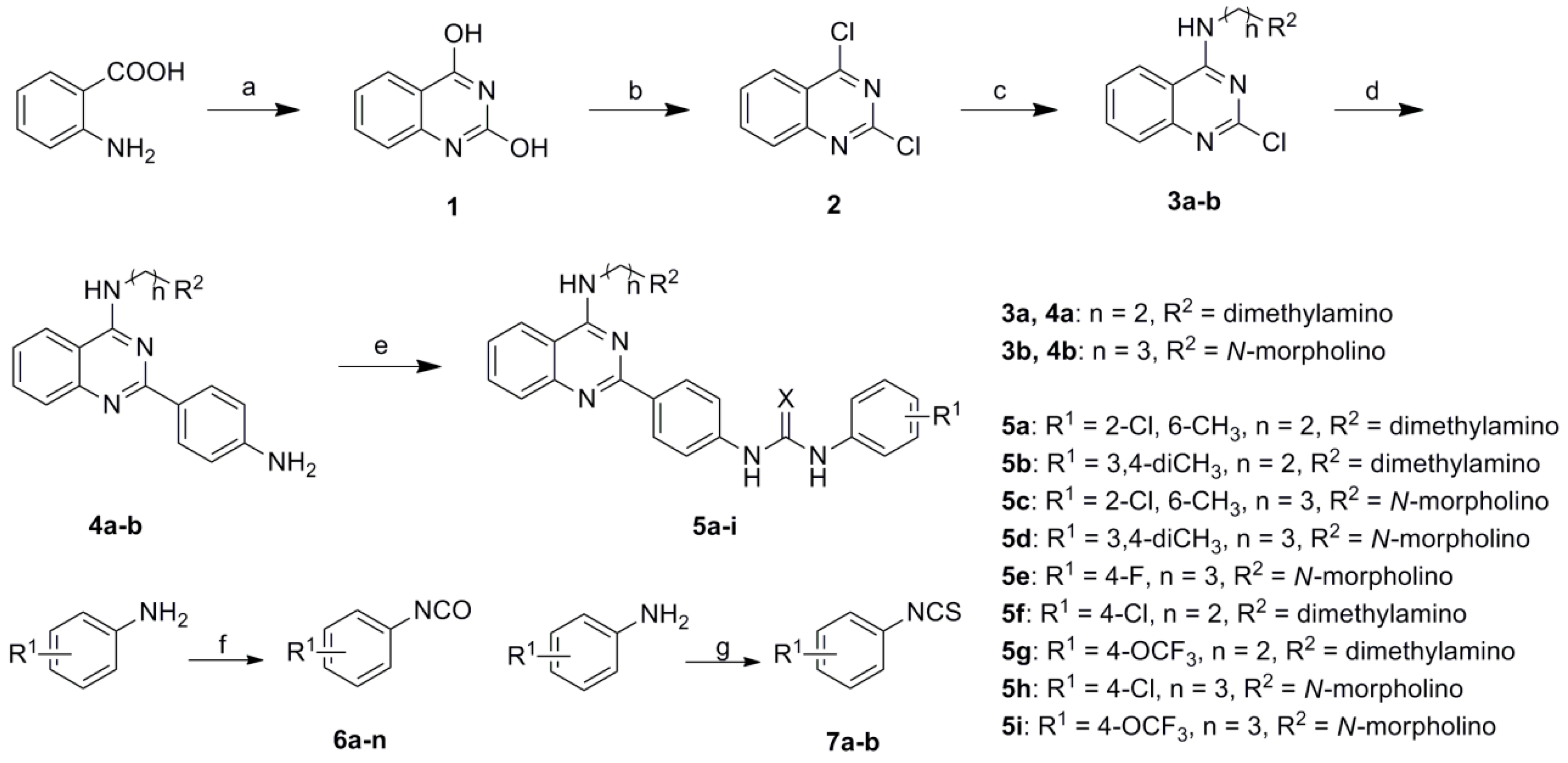 design synthesis and structure activity relationship of novel coumarin derivatives