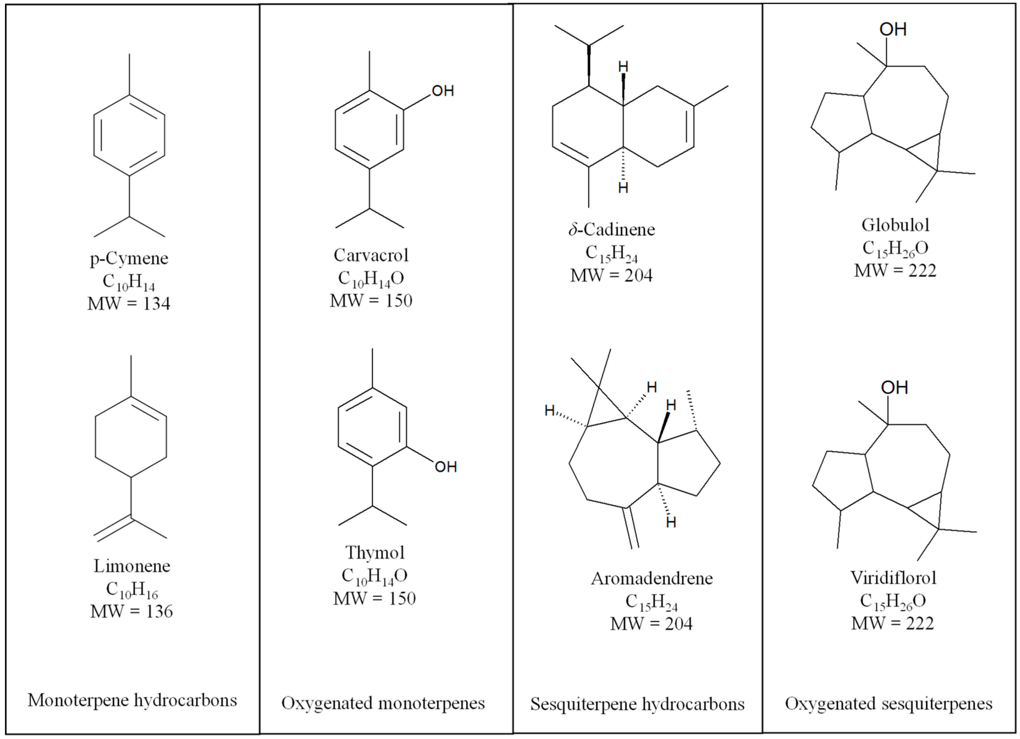 Molecules | Free Full-Text | Biological Activities of Essential Oils ...