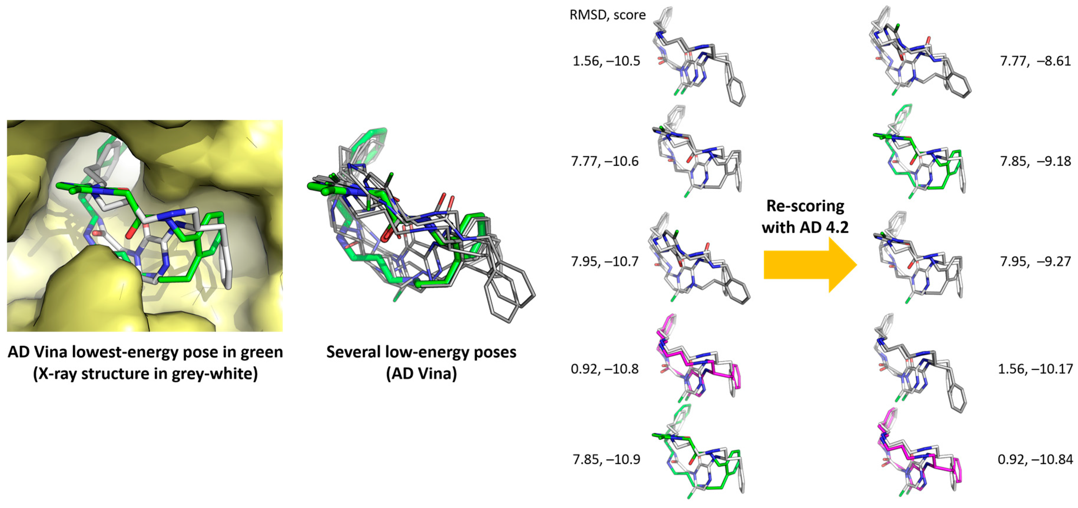 thesis molecular docking Thesis july 2014 de-novo drug designing and molecular docking isoproturon binds at the qb binding site of the d1 protein of photosystem-ii.