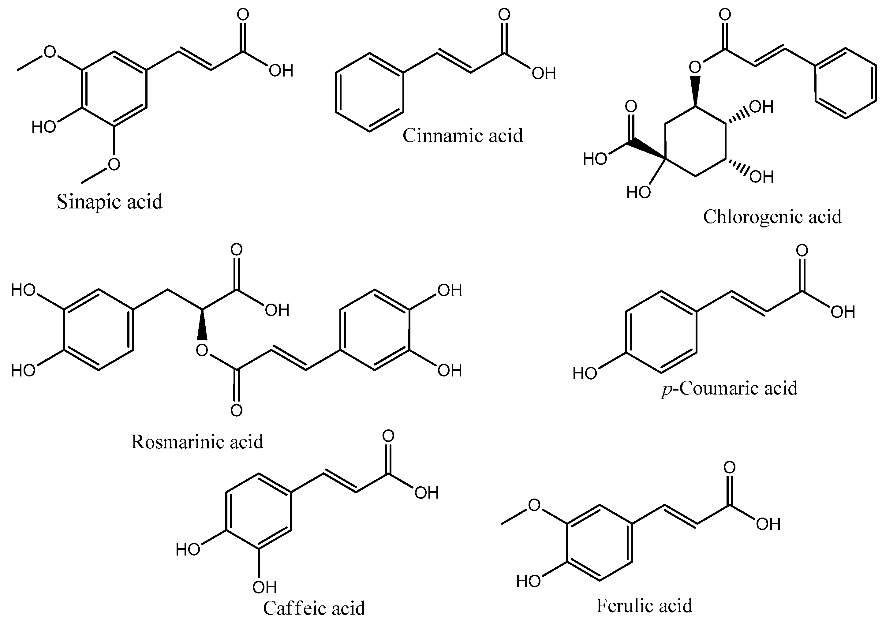 Schematic Representation Of Hydroxycinnamic Acid Synthesis Molecules 22 00281 G002 Figure 2