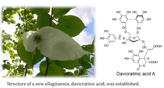 Ellagitannins of Davidia involucrata. I. Structure of Davicratinic Acid A and Effects of Davidia Tannins on Drug-Resistant Bacteria and Human Oral Squamous Cell Carcinomas
