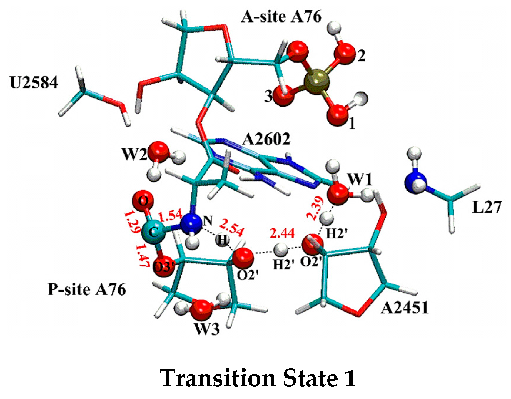 Molecules free full text distal proton shuttle mechanism of molecules 22 00571 g002 pooptronica Gallery