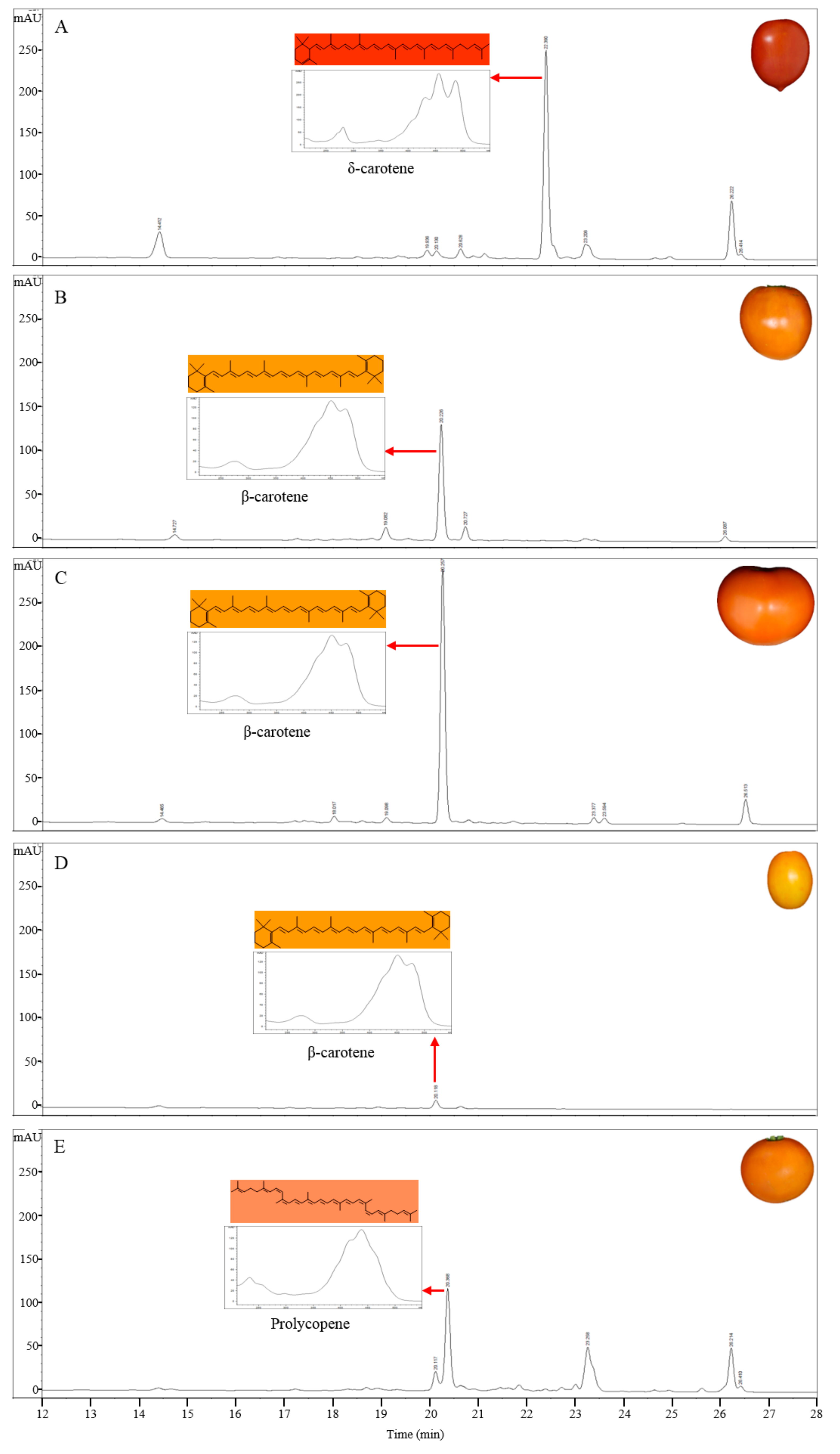 Molecules Free Full Text Inferring The Genetic Determinants Of Process Flow Diagram Tomato Ketchup 22 00764 G002