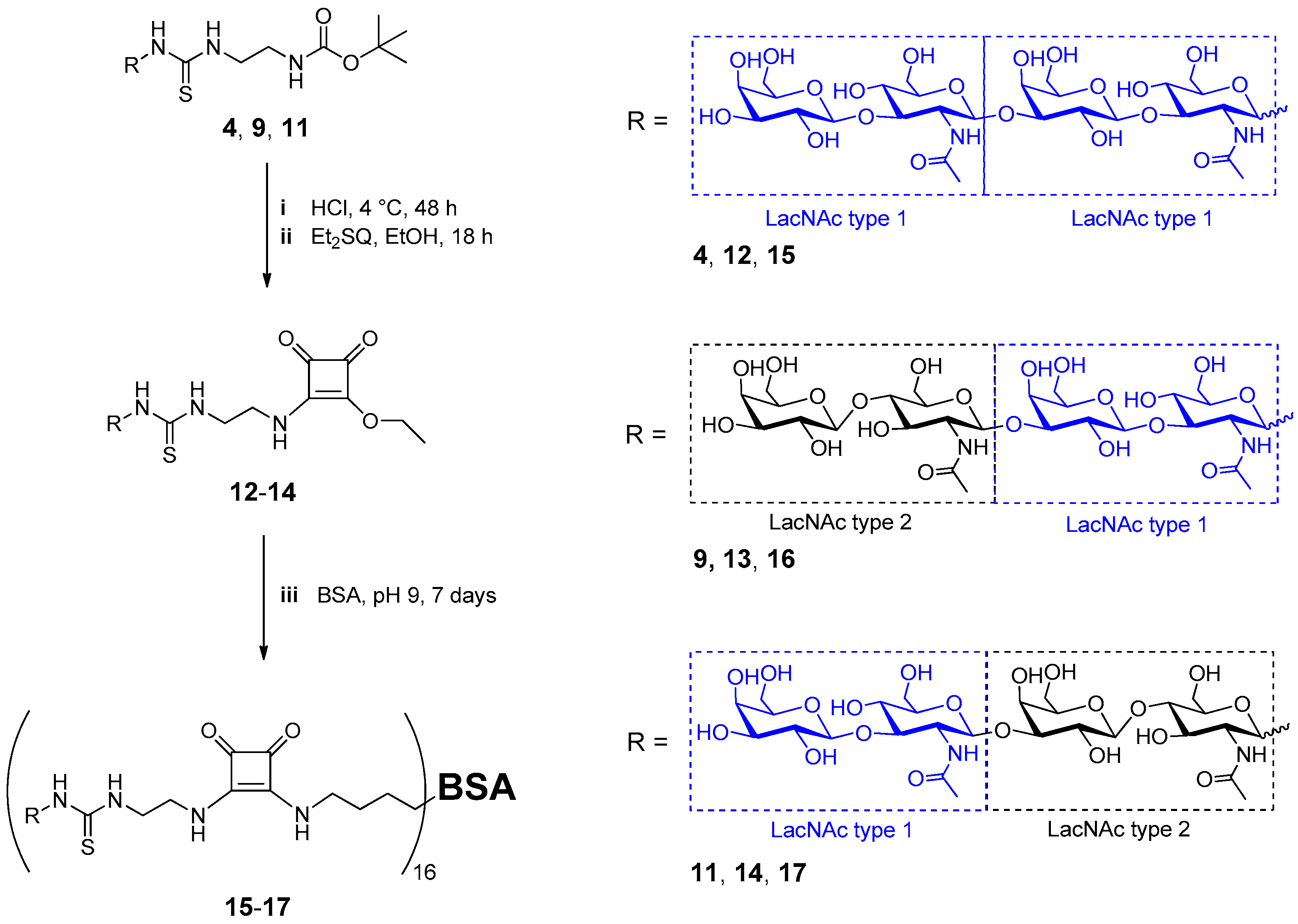 Molecules Free Full Text Enzymatic Synthesis Of N