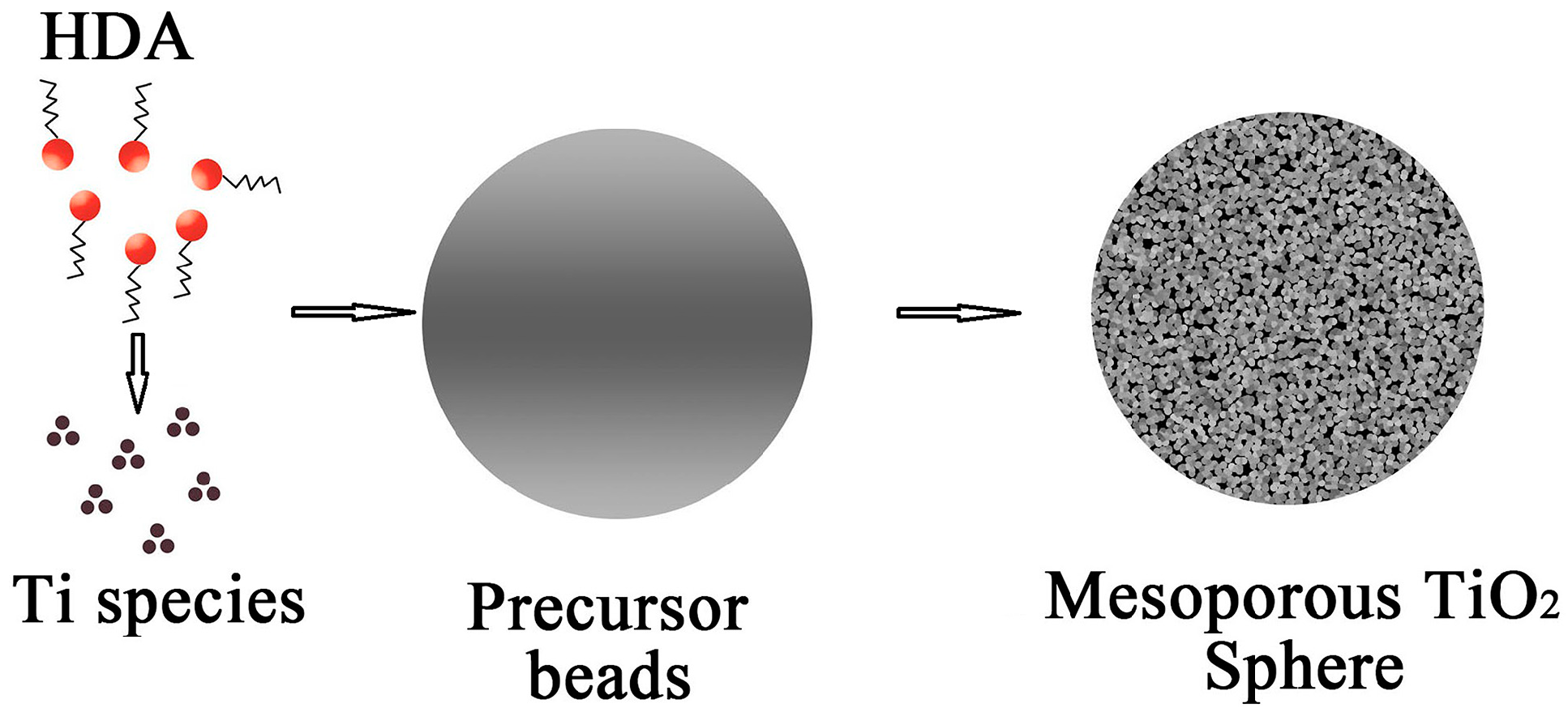 molecules free full text soft template synthesis of mesoporous