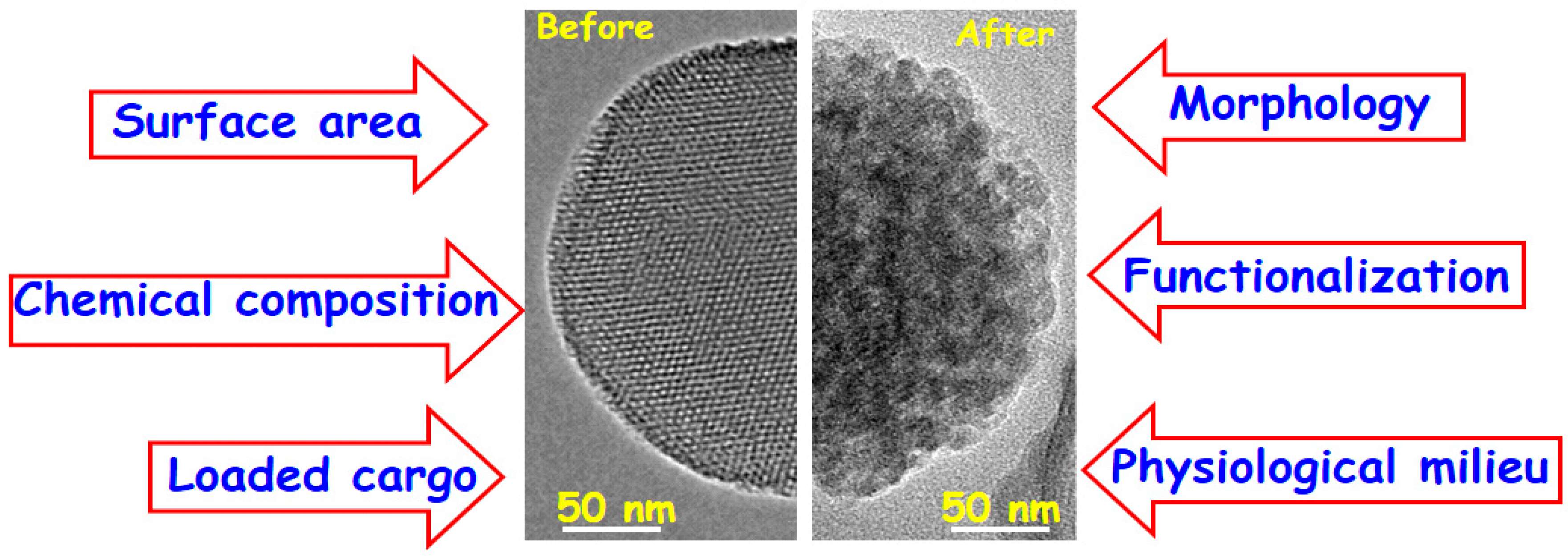 Molecules   Free Full-Text   Mesoporous Silica Nanoparticles for