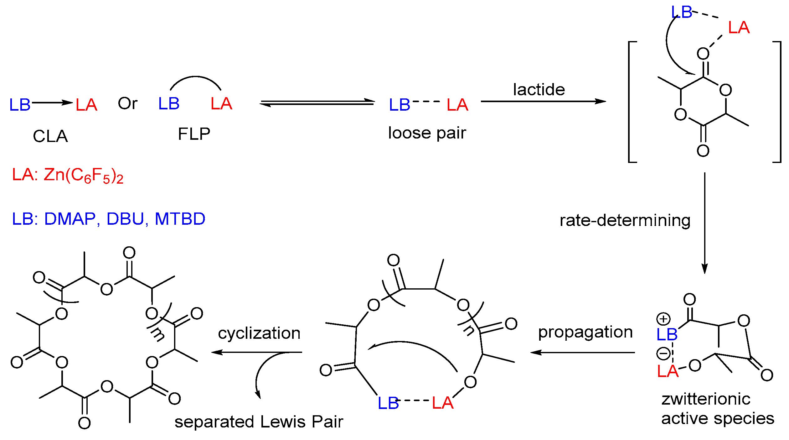 Lichen  Wikipedia