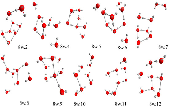 Molecules Free Full Text Anionic Water Cluster Polymers H2o18