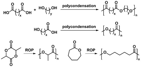 bio based polymers and their future trends article review Review article: polymer-matrix  future outlook 1558  particle geometries and their respective surface area-to-volume ratios are shown in.
