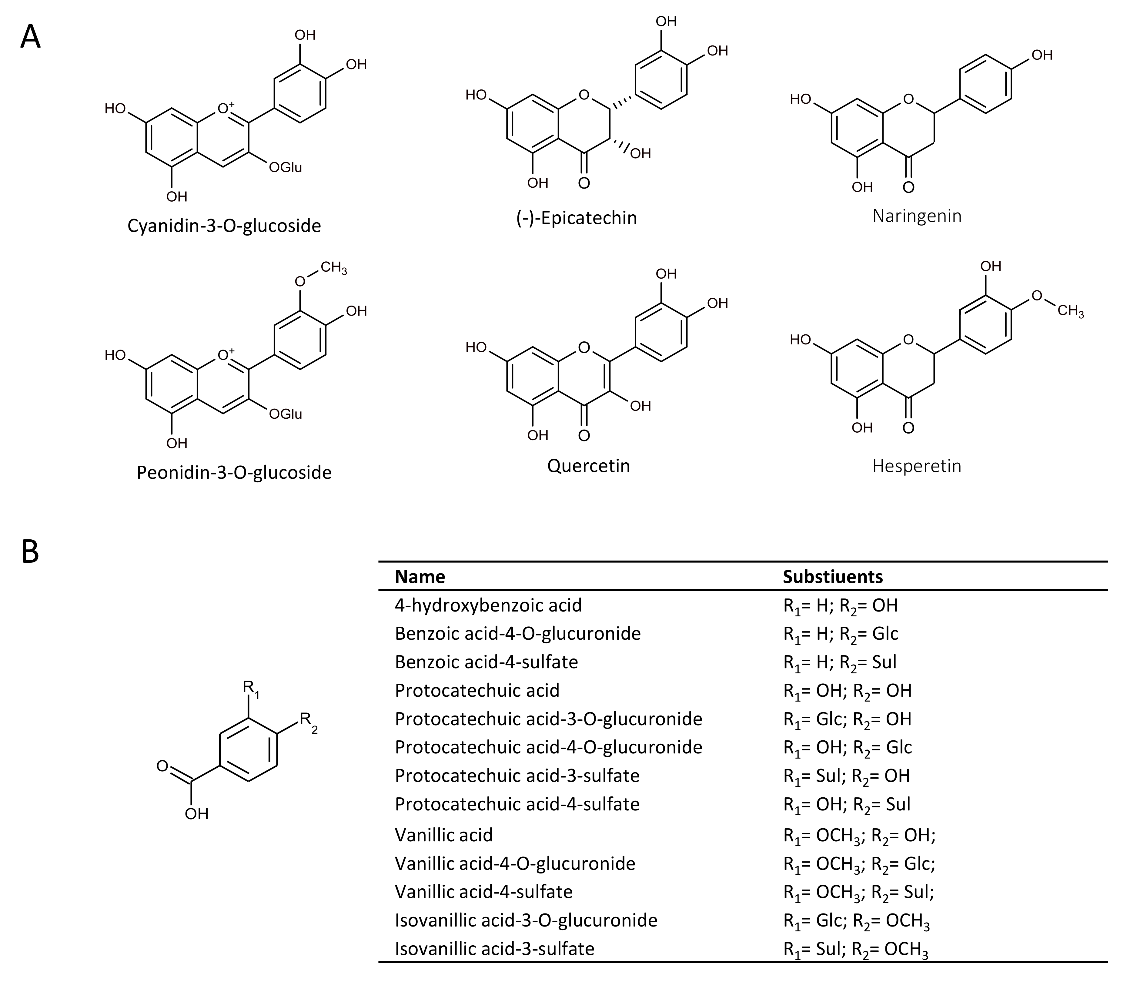 anthocyanin research paper Research paper the pharmacokinetics of anthocyanins and their metabolites in humans  anthocyanins are metabolized to a structurally diverse range of metabolites .