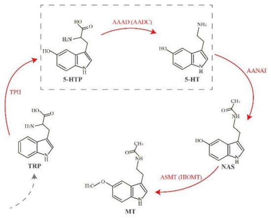 Molecules | April 2018 - Browse Articles