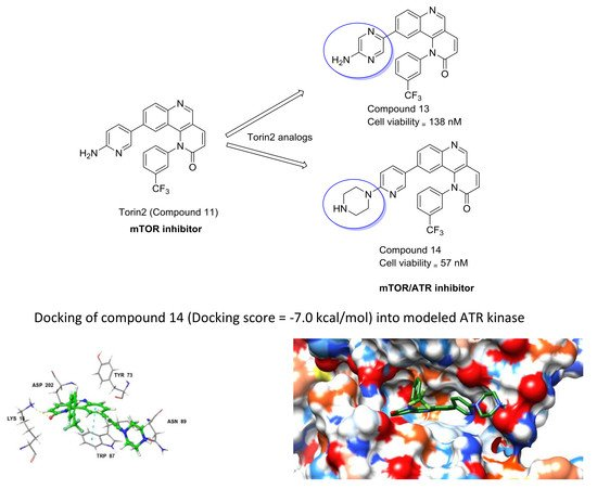 design synthesis and docking studies of Summary of design, synthesis, cytotoxicity, hutopoiiα inhibitory activity and molecular docking studies of pyrazole derivatives as potential anticancer agents design and synthesis of novel 1h-tetrazol-5-amine based potent antimicrobial agents: dna topoisomerase iv and gyrase affinity evaluation.