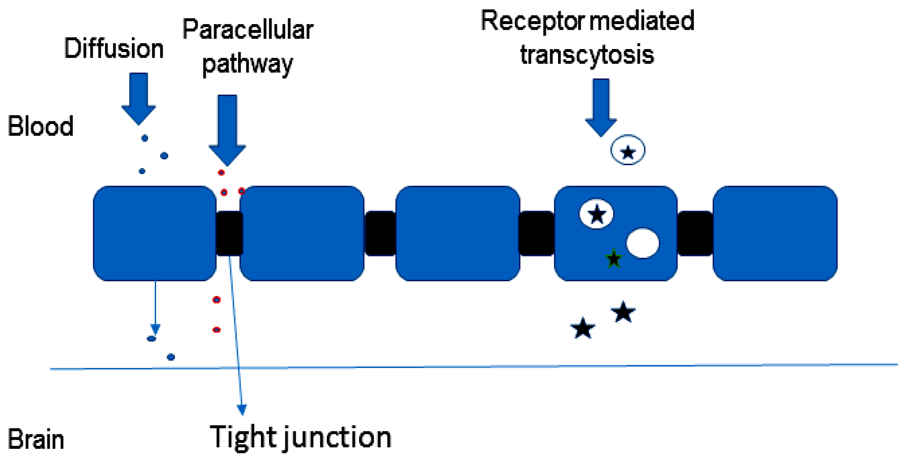 Molecules | Free Full-Text | Design and Efficacy of Nanogels