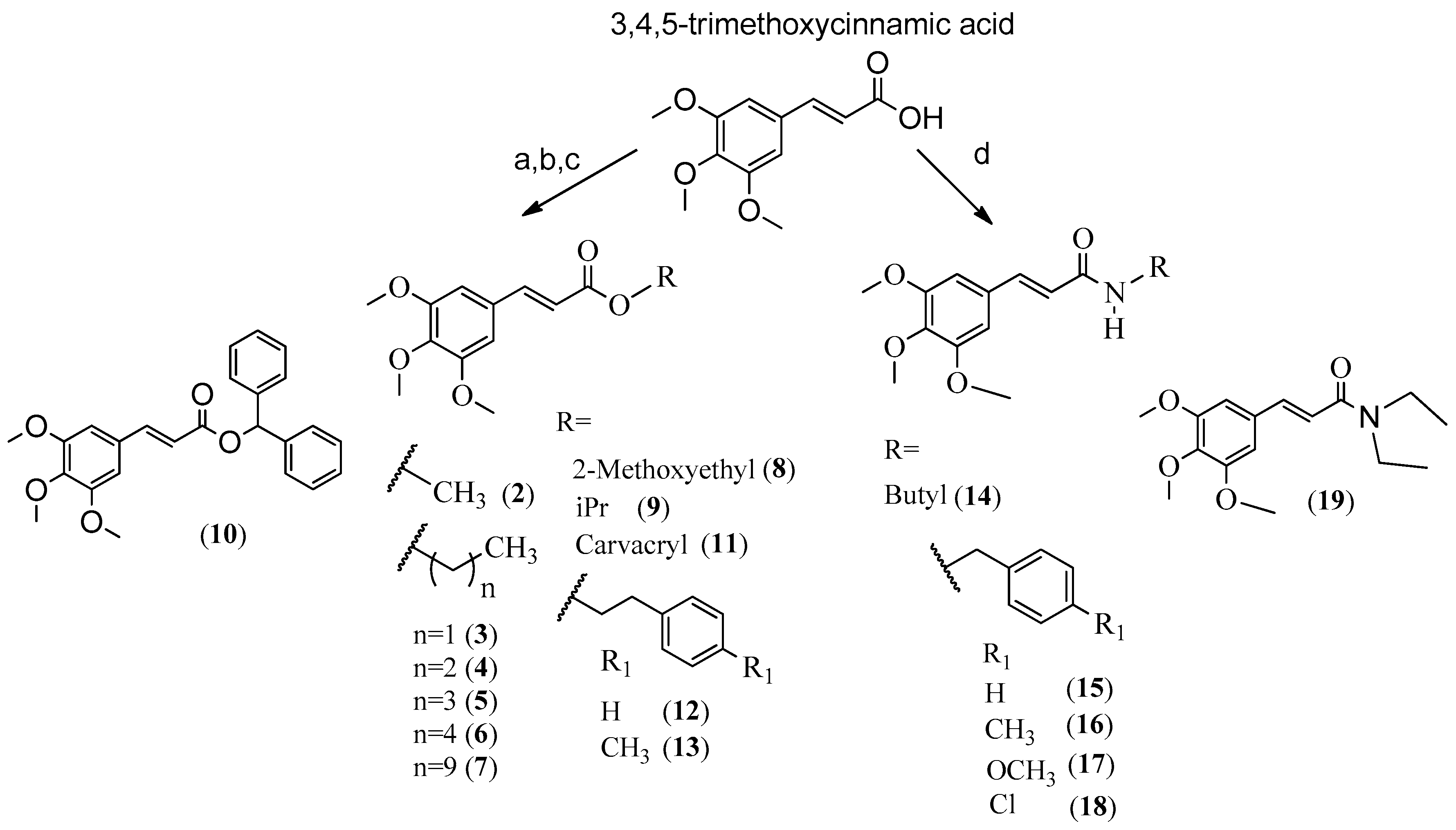 5033a8ed5a3 Molecules | Free Full-Text | Piplartine Analogues and Cytotoxic ...