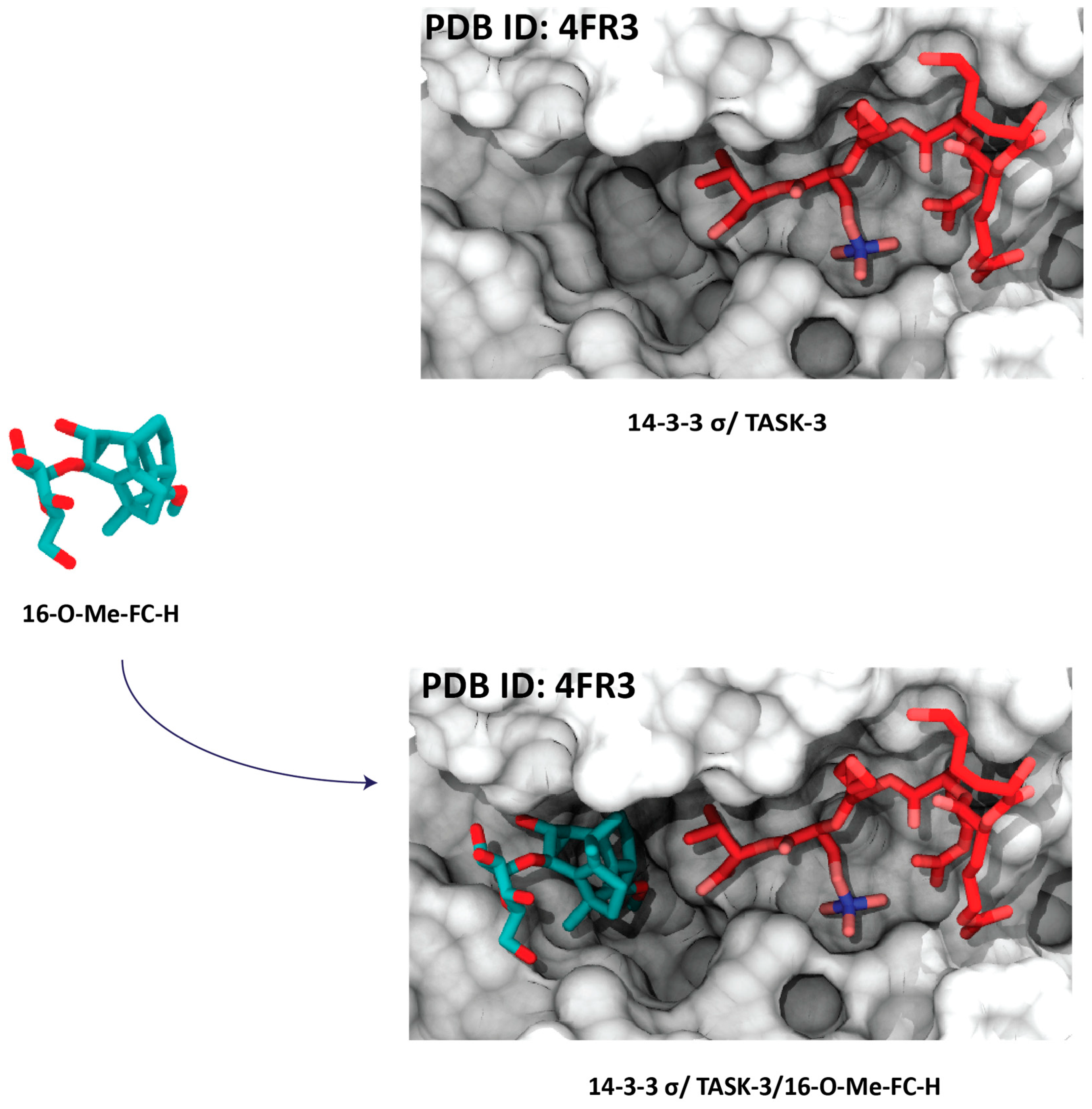 Molecules | Free Full-Text | 14-3-3: A Case Study in PPI