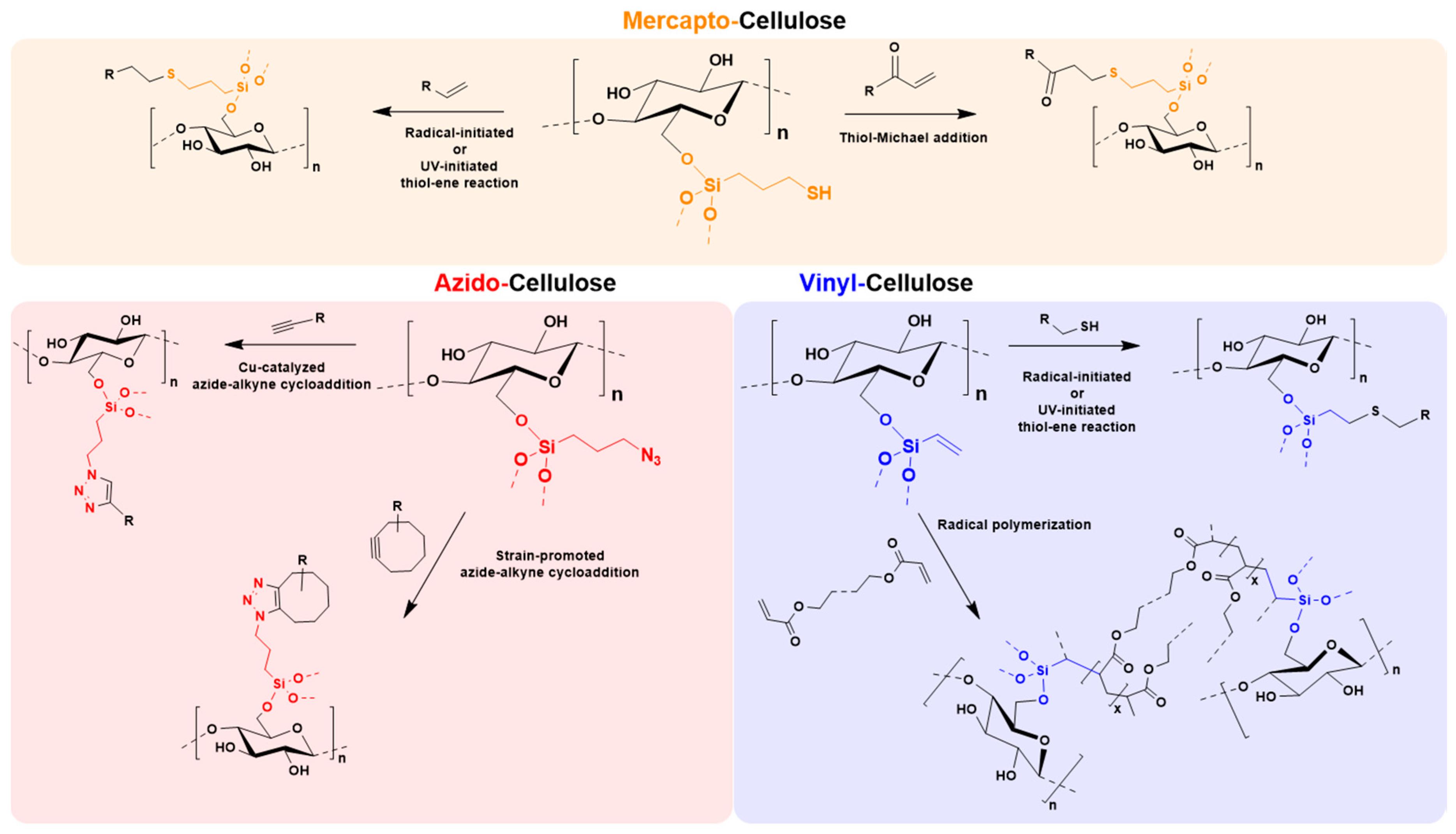 Molecules Free Full Text A General Aqueous