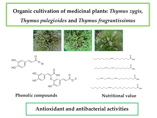 Molecules Topical Collection Phytochemicals