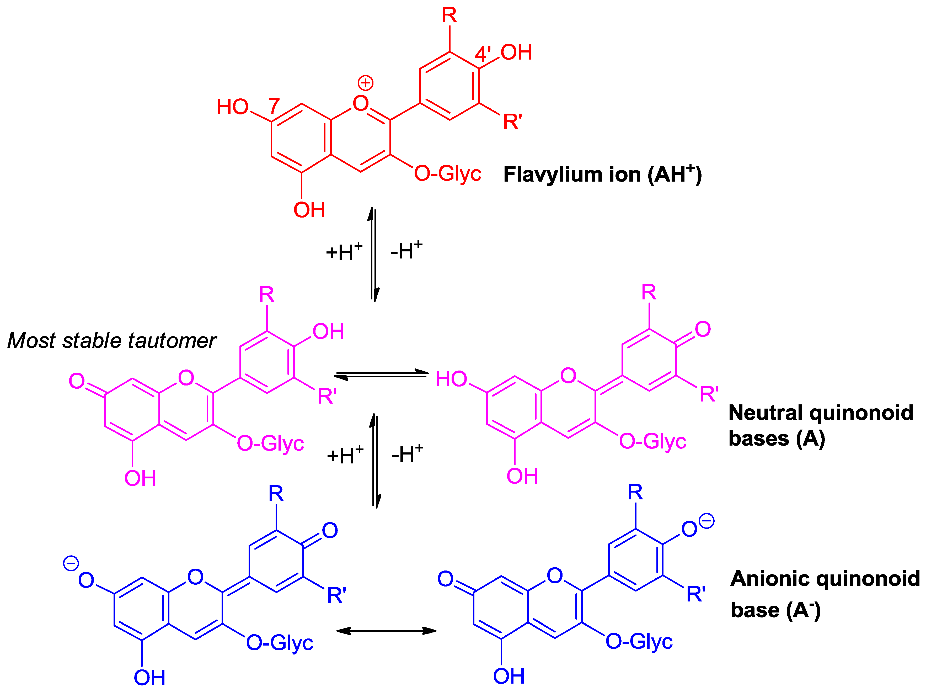 Molecules | Free Full-Text | The Chemical Reactivity of Anthocyanins