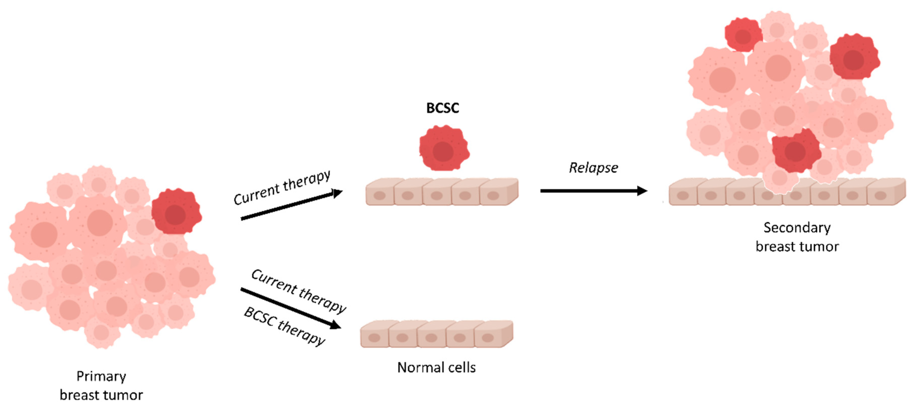 Molecules | Free Full-Text | Targeting Breast Cancer Stem Cells to