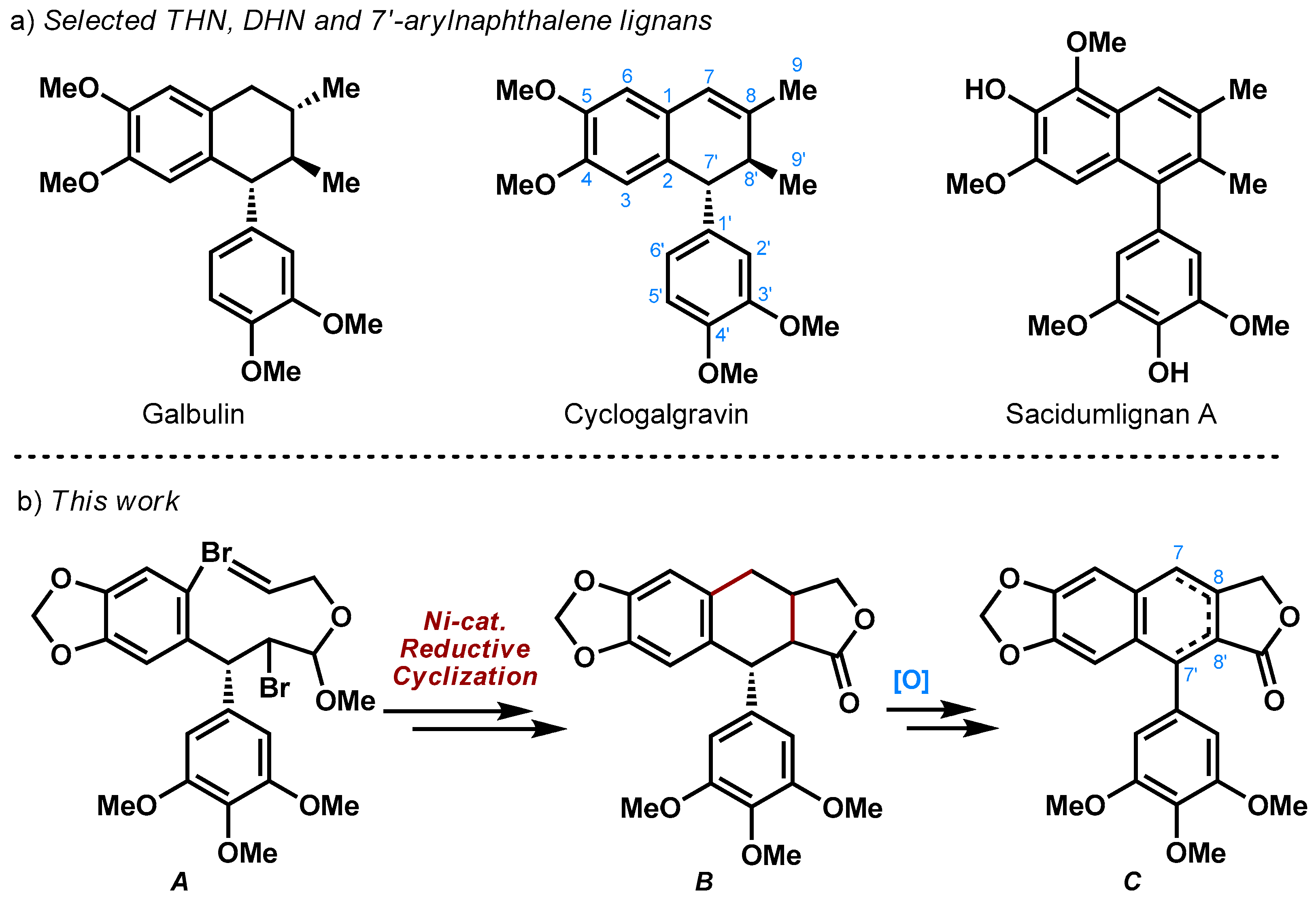 Molecules | Free Full-Text | Concise Synthesis of (+)-β- and γ
