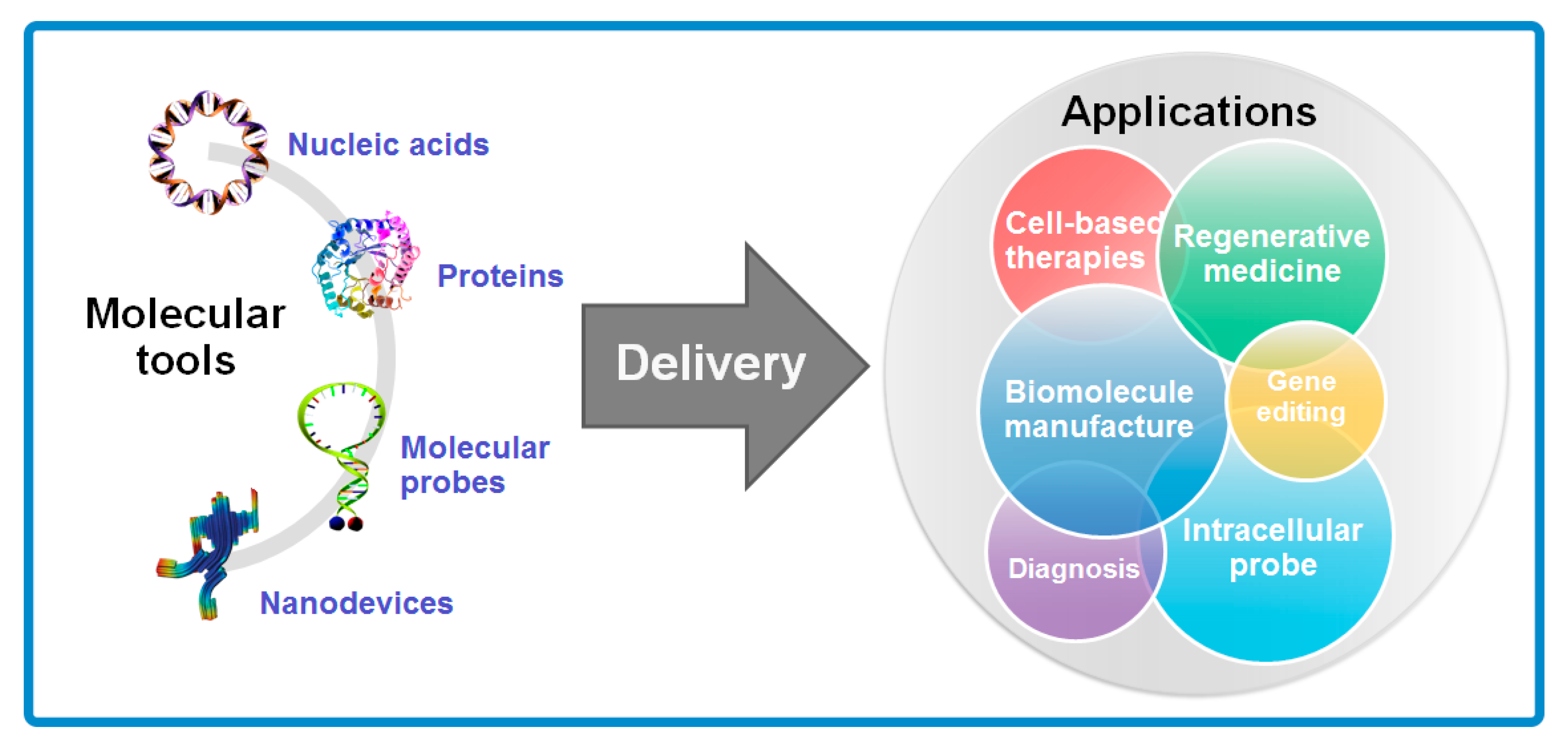Molecules Free Full Text A Review On Electroporation Based Intracellular Delivery Html Enrich your vocabulary with the. intracellular delivery