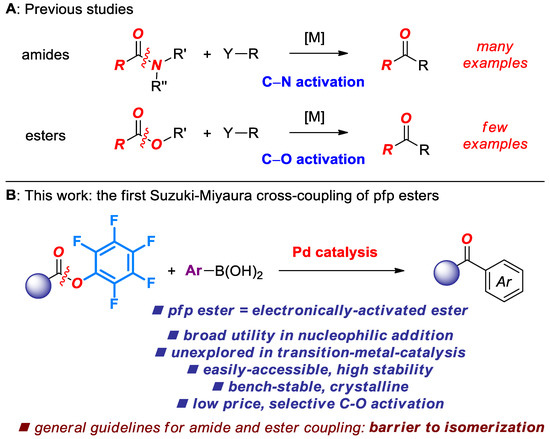 Molecules | Special Issue : Amide Bond Activation