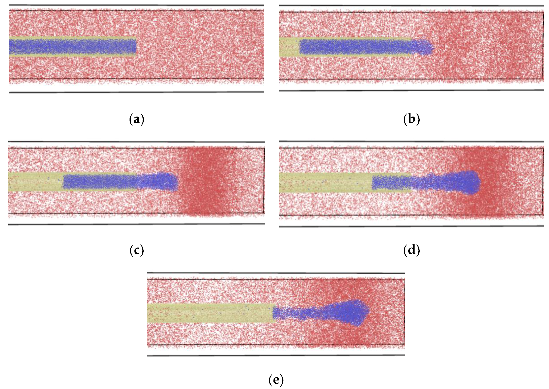 Molecules   Free Full-Text   Molecular Dynamics Simulation
