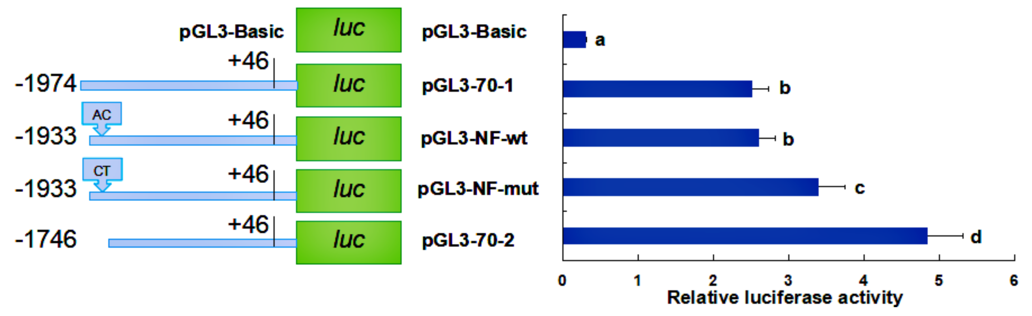 Molecules   Free Full-Text   Responses of HSP70 Gene to