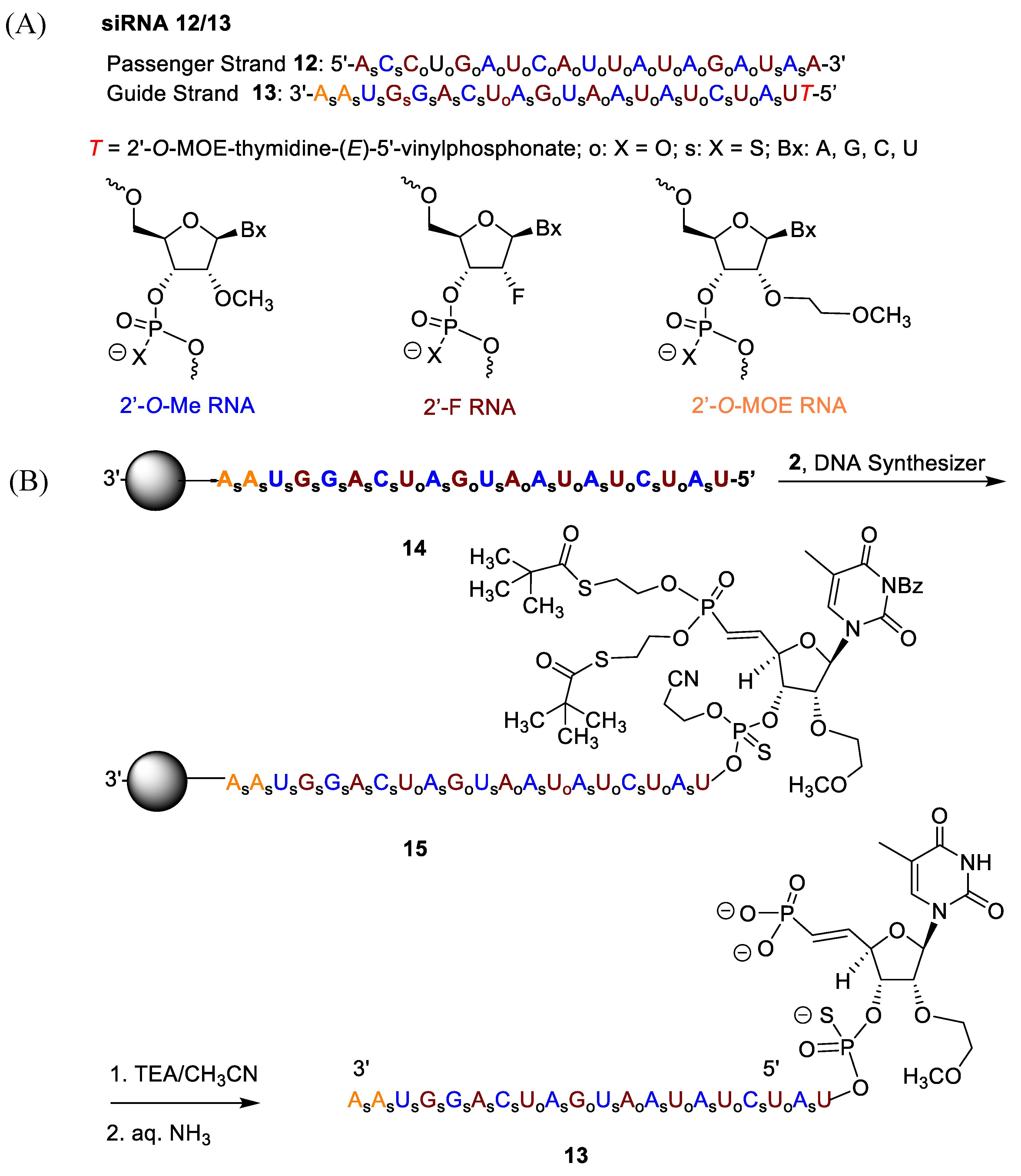 Molecules | Free Full-Text | S-Acyl-2-Thioethyl: A