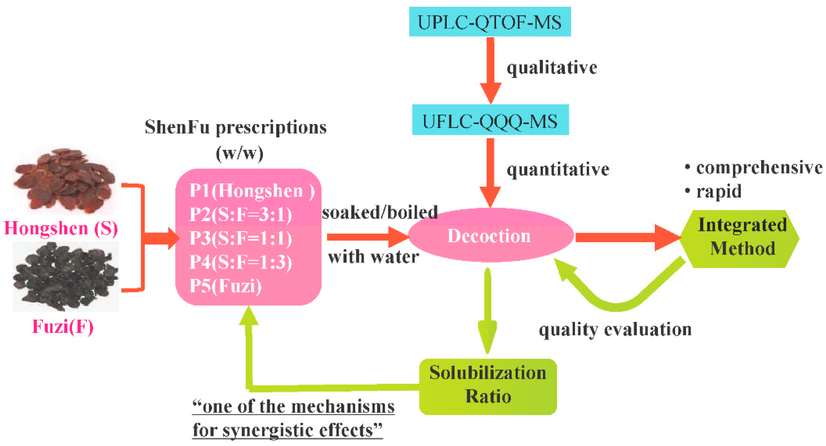 Molecules   Free Full-Text   A Comprehensive and Rapid