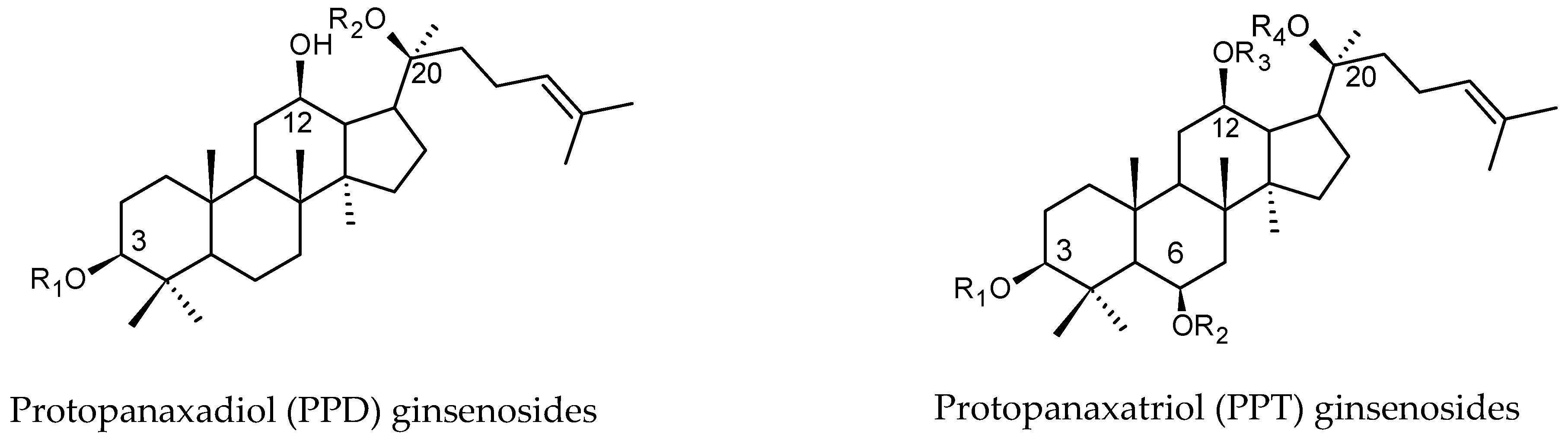Molecules 24 01856 g001