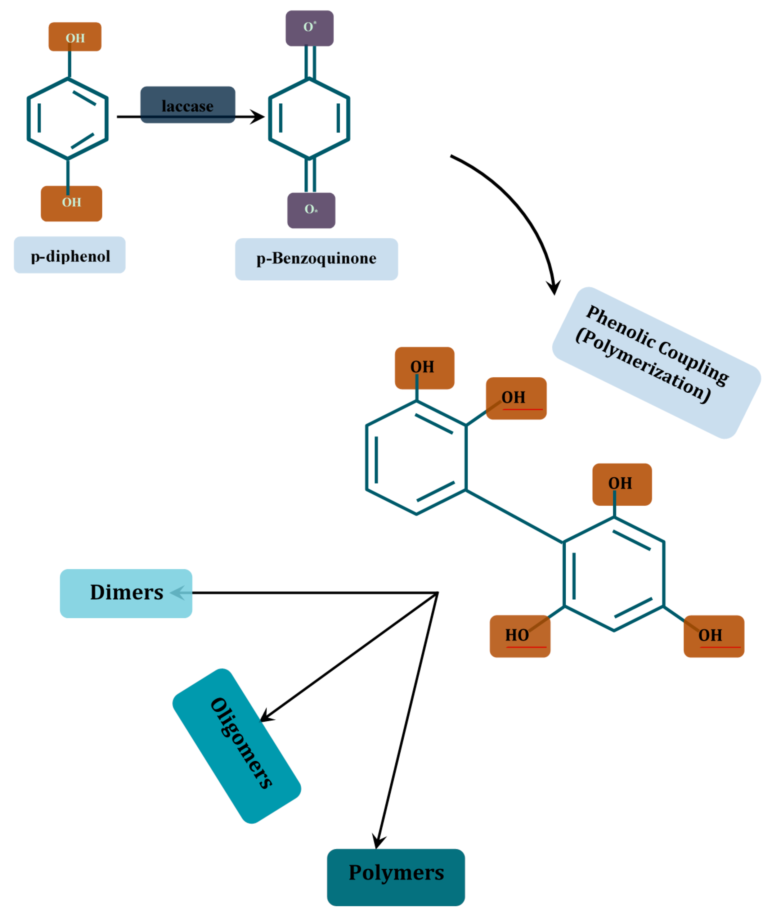 Molecules | Free Full-Text | Aptitude of Oxidative Enzymes for