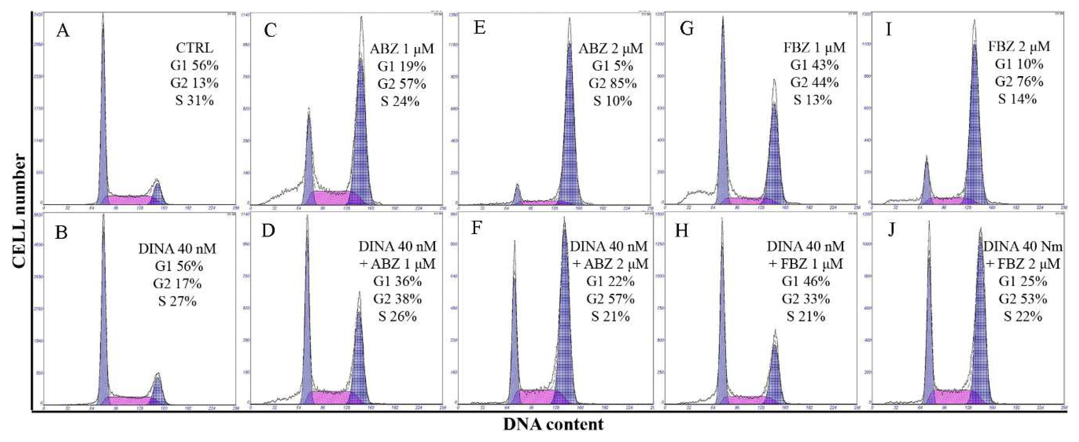 Molecules | Free Full-Text | Benzimidazoles Downregulate Mdm2 and