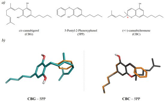 Molecules   July-2 2019 - Browse Articles