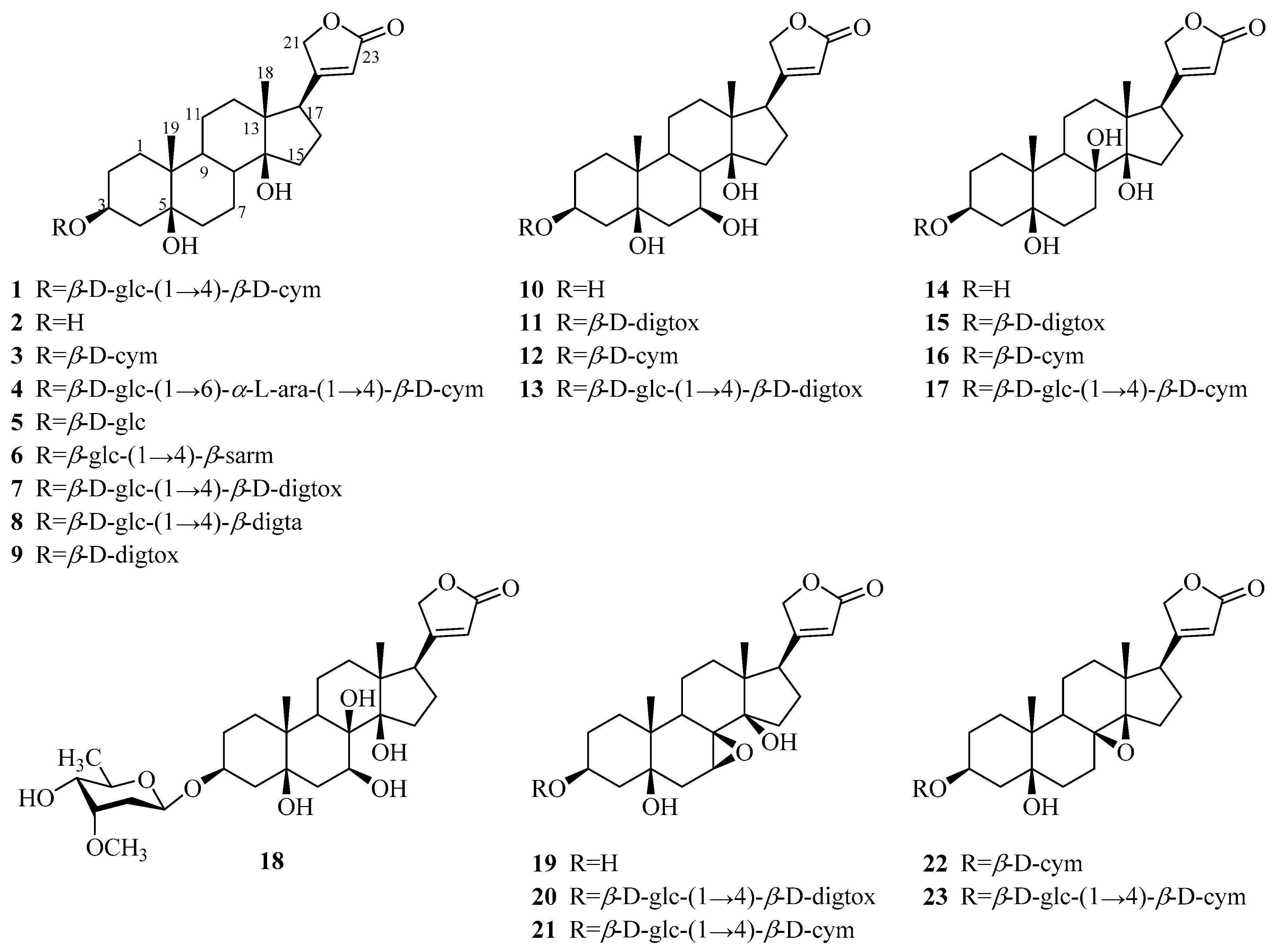 Molecules | Free Full-Text | Genus Periploca (Apocynaceae