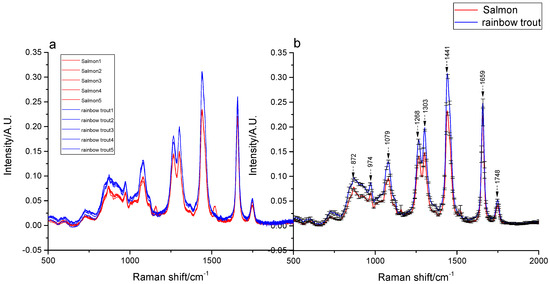 Molecules | Free Full-Text | Rapid Identification of Rainbow Trout