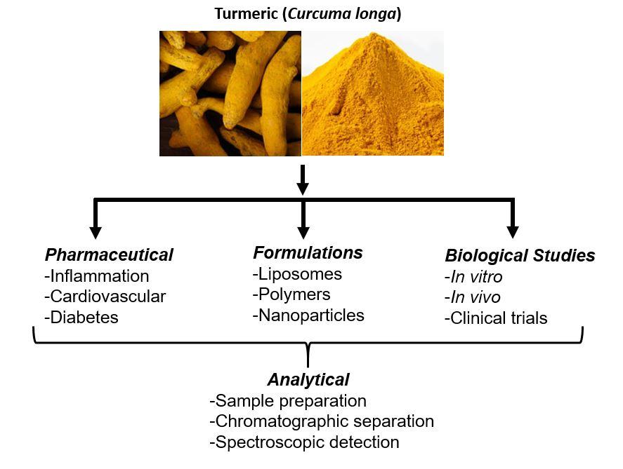 Molecules   Free Full-Text   Curcumin: Biological