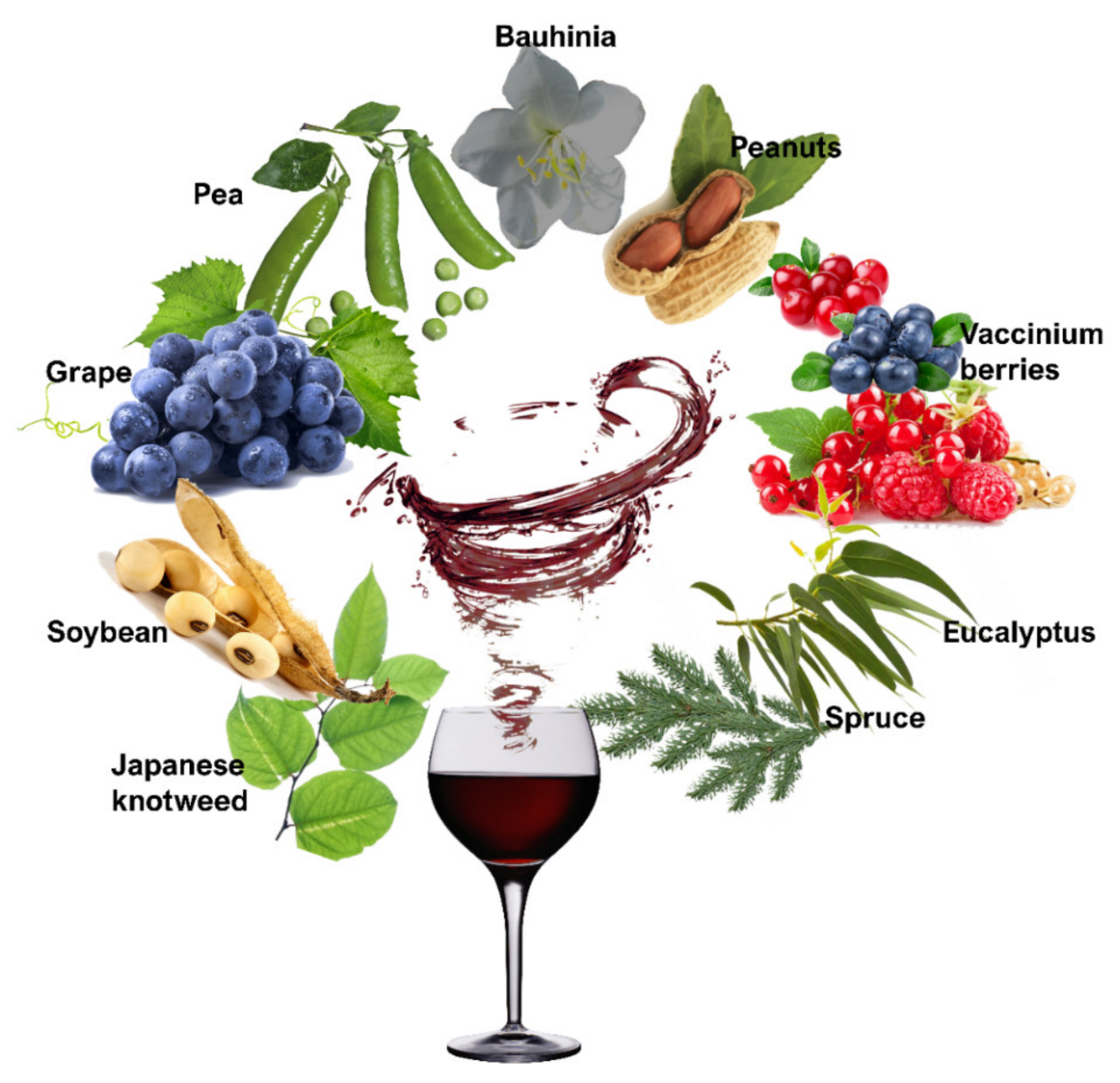 Molecules Free Full Text Resveratrol A Fair Race Towards Replacing Sulfites In Wines Html