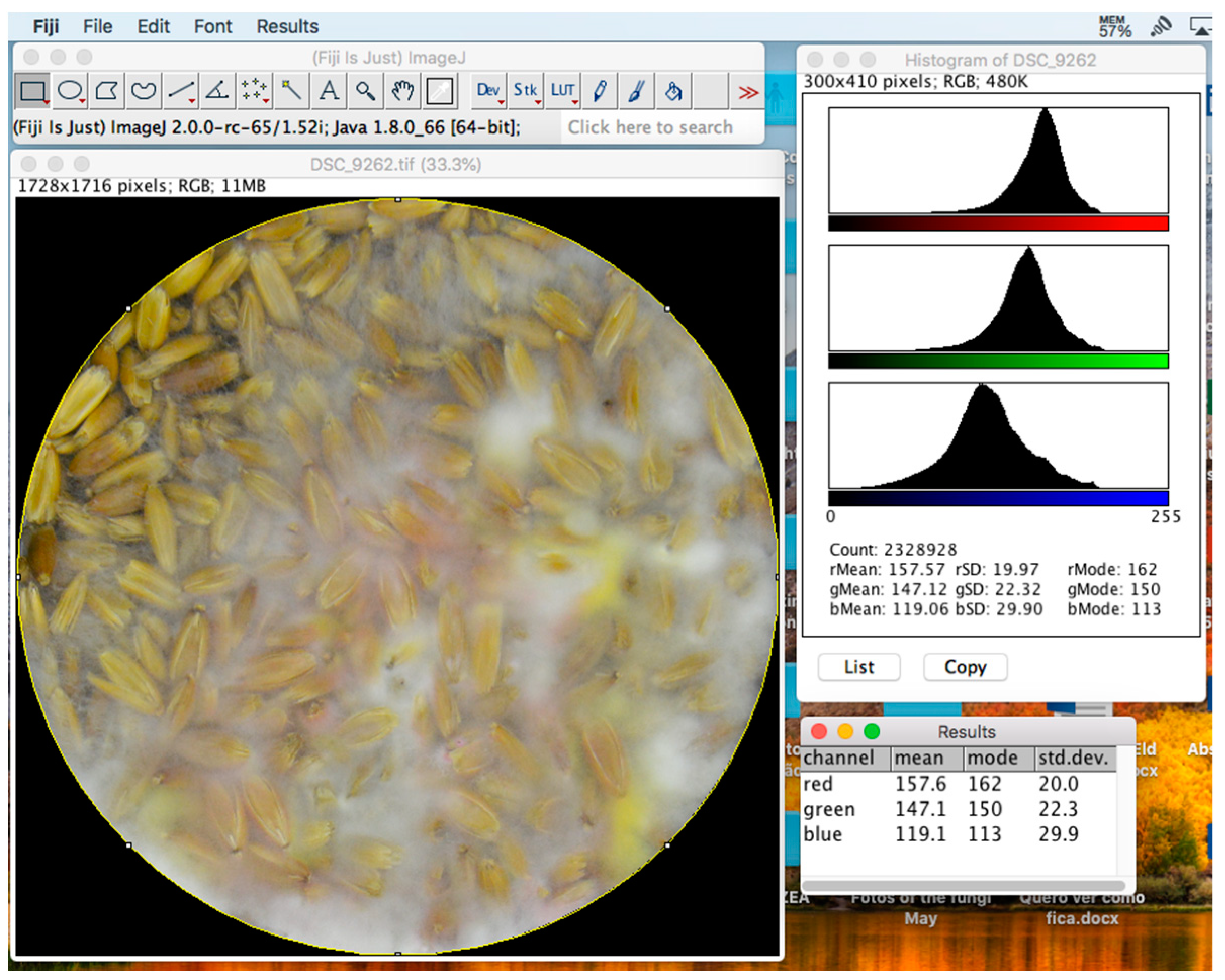 MPs | Free Full-Text | Why RGB Imaging Should be Used to Analyze