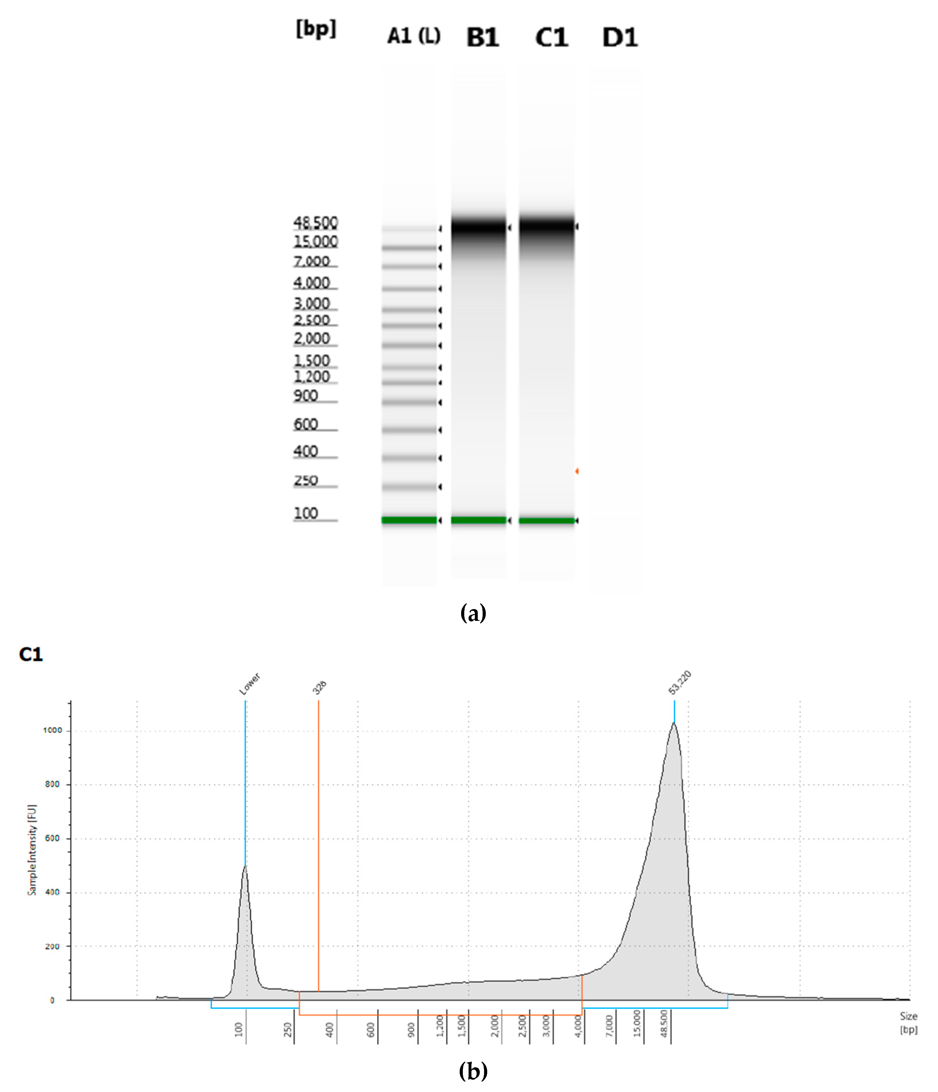 Mps Free Full Text Optimized Extraction Of Insect Genomic Dna For Long Read Sequencing Html