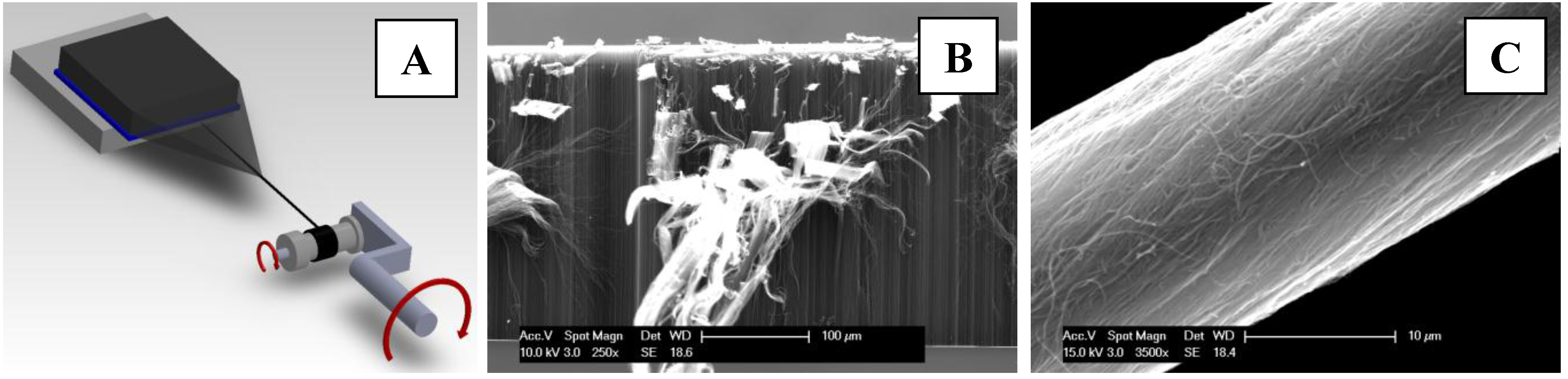 a study on nanotechnologies and the potential applications of nanotube fibers and carbon nanotubes c There are several potential applications for carbon nanotubes  the article reports on the study of cytotoxicity of c 60  carbon-nanotube fibers,.