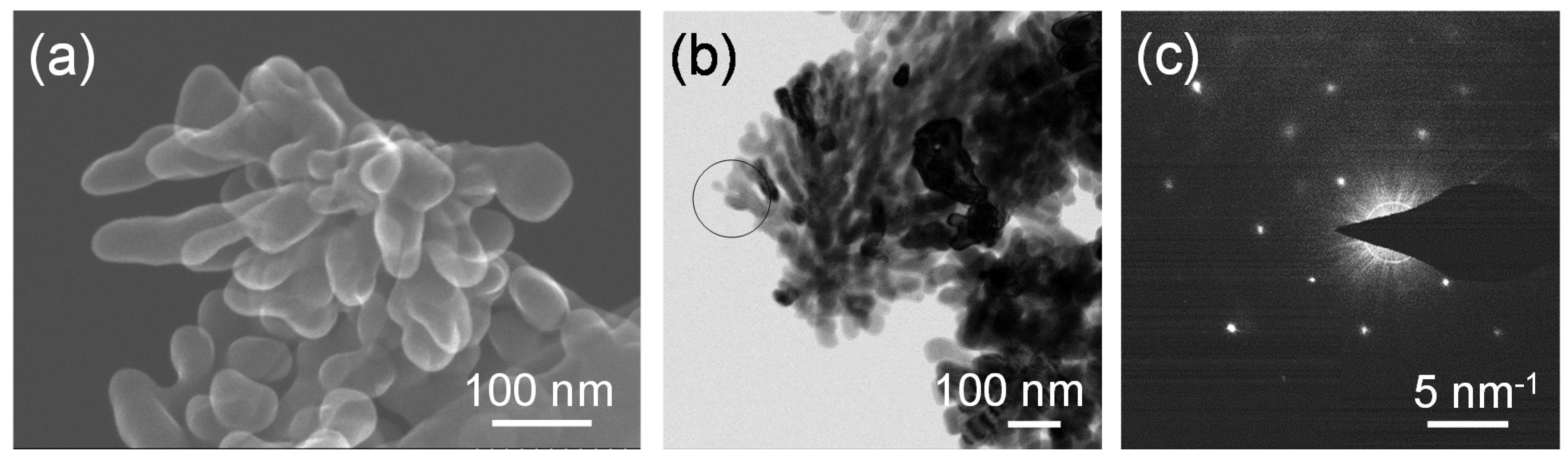 synthesis of strontitum hexaferrites nanoparticals Low-temperature hydrothermal synthesis of ultrafine strontium hexaferrite {low-temperature hydrothermal synthesis of ultrafine strontium hexaferrite nanoparticles},.