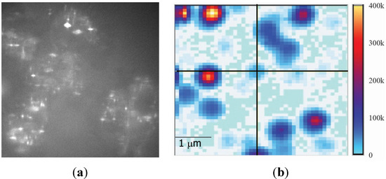 Emission Properties of Fluorescent Nanoparticles Determined by Their Optical Environment